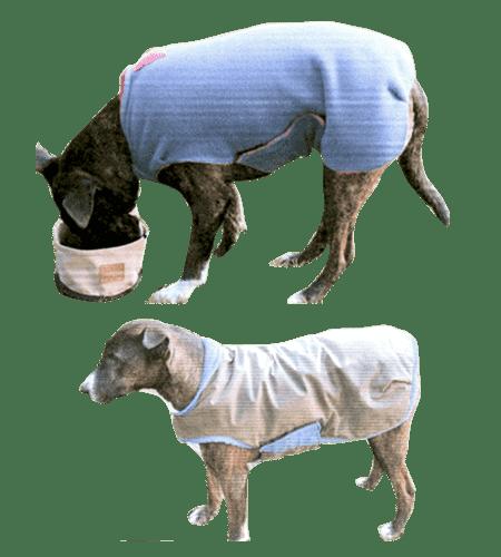 Dog Rugs.-min