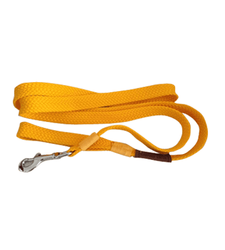Dog leads-min