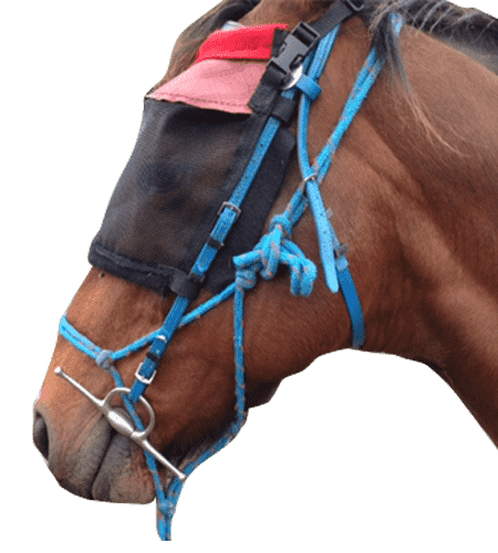 FLY VEILS BRIDLE MOUNTED 1-min