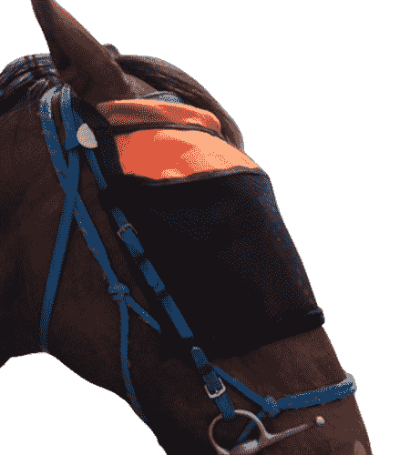 FLY VEILS BRIDLE MOUNTED 2-min