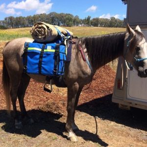 riding saddle pack saddle kit